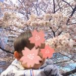 目黒川 桜 子連れ