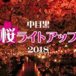 目黒川 桜 ライトアップ