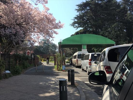 新宿御苑 駐車場 混雑