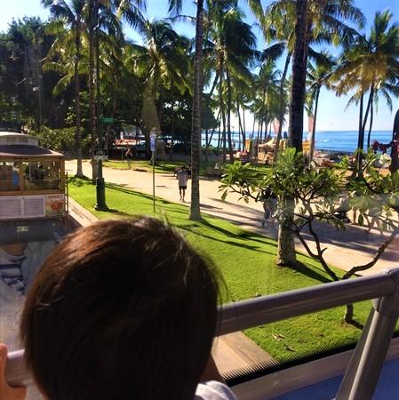 ハワイ 子連れ スケジュール