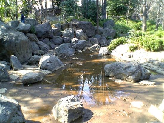 目黒区 水遊び