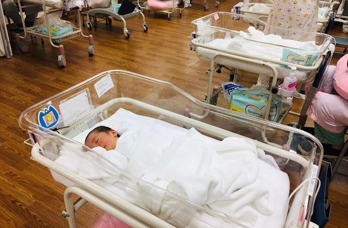 昭和大学病院 出産