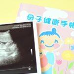 妊娠報告 グッズ